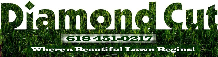 Lawn care service snow leaf removal l diamond cut lawn for Local lawn care services