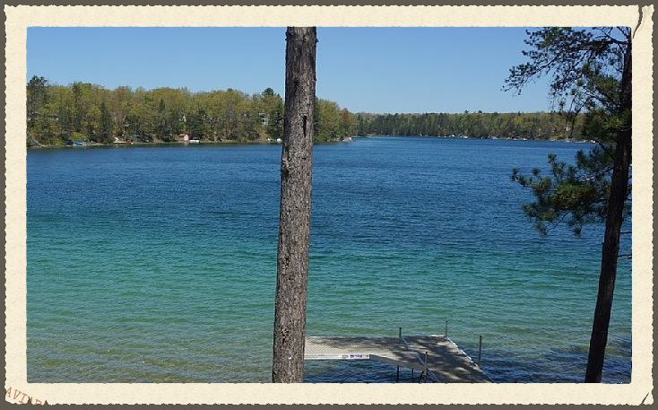 Waterfront Homes | Lots | For Sale | Gaylord | Lewiston | Northern