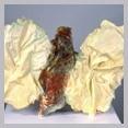 "Bug Self Portrait (back), 12"" x 16"" x 4"", plaster, cloth, wire, acrylic"