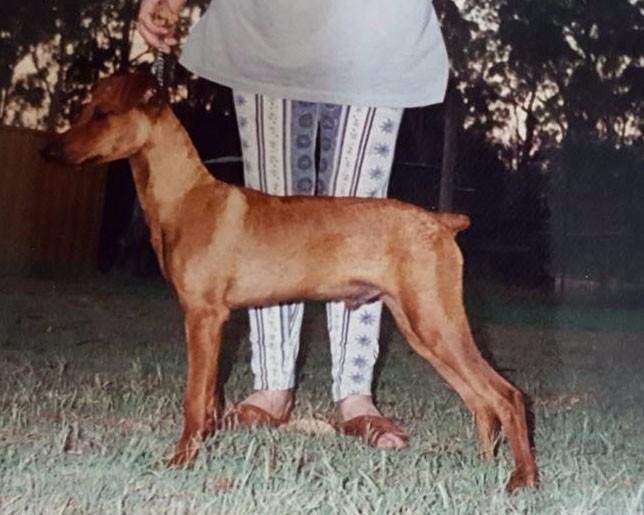 Bundy at 12 months (4)