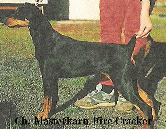 Britta_-Masterkarn_Fire_Cracker-_named.jpg