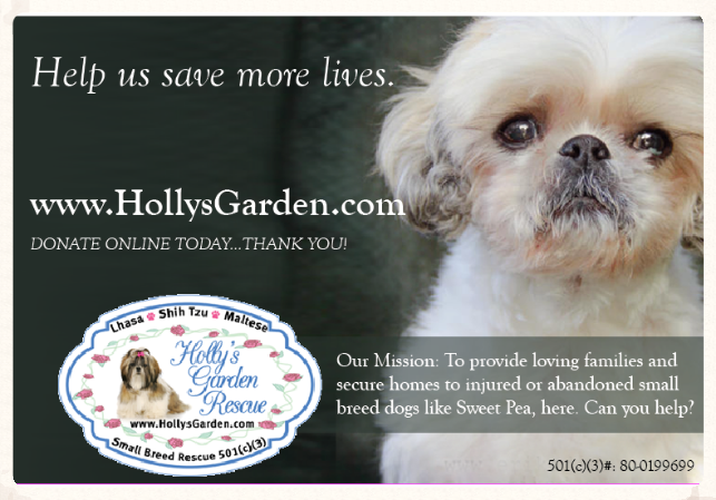 Hollysgardenrescue