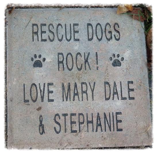 Joyful Rescues - Non-profit Animal Rescue Group