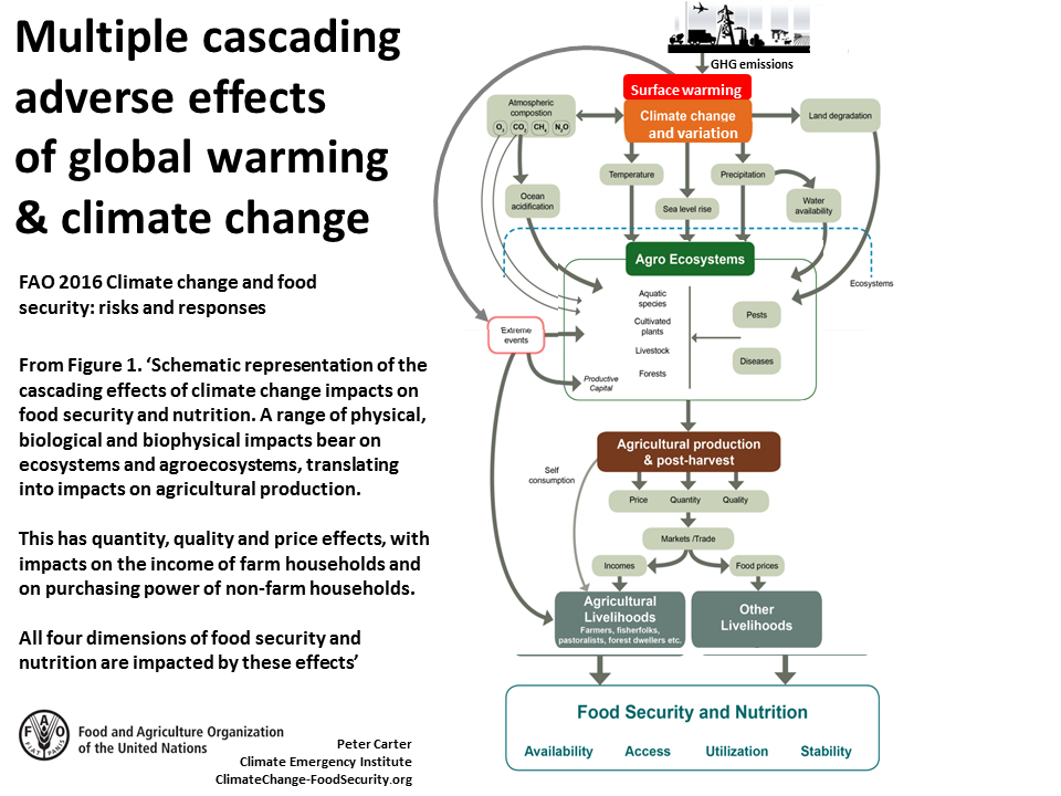 effects of climate change on developing Impacts of climate change on agriculture in developing countries limited financial resources and technologies available to adapt to environmental impacts.
