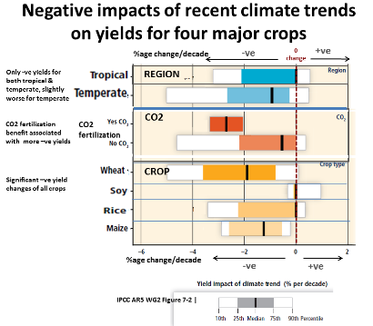 the negative effects of global warming on food supply and security Higher global temperatures may affect food security,  ationary effects of global warming on the  the impact of climate change on the global economy.