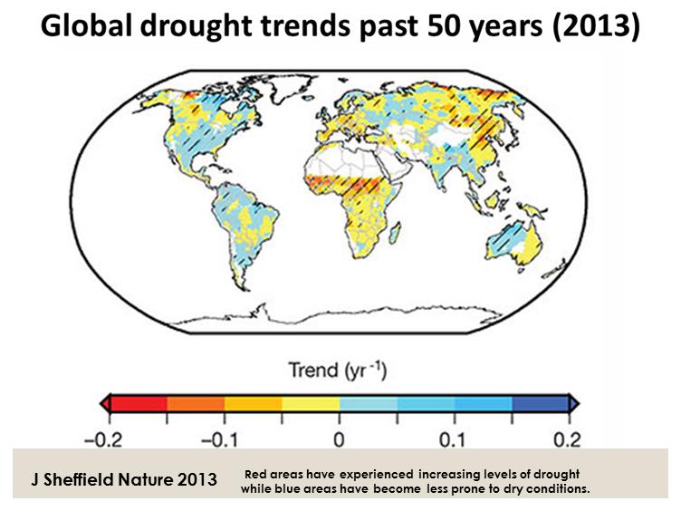 Global food security under climate change essay