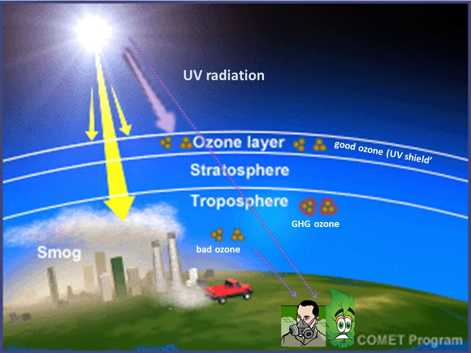 effects of three environmental problems acid rain global warming and depletion of ozone layer