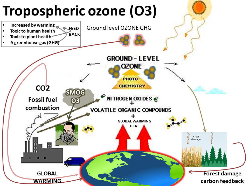 negative impacts of cfcs Conversely, negative radiative forcing means that earth loses more energy to space than it receives from no secondary effects induced because of changes in tropospheric motions or its thermodynamic state), and no dynamically induced the decline in cfcs considerably tempered the increase.