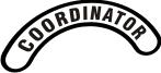 Mini Helmet Title Decal (NG-1003F) Coordinator