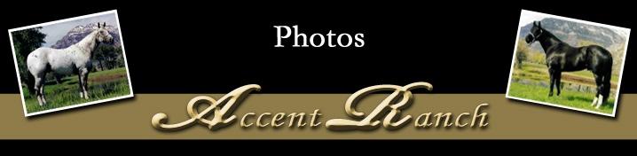 Accent Ranch Photos