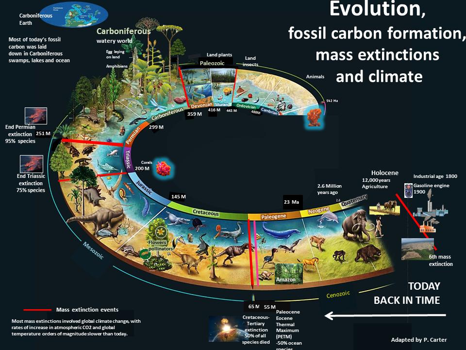 external image evol-spiral-extinct-april-16.png