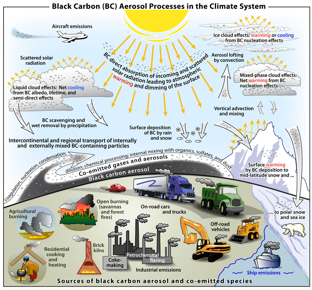 the causes of climate change essay