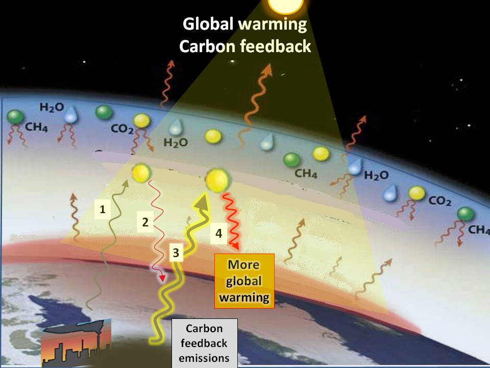 the two exchange systems that alter the co2 concentration of the atmosphere Changes in the concentration and stable isotope ratio of atmospheric co2 can be used to study variations in the net exchange of carbon dioxide in terrestrial ecosystems (net difference between total photosynthesis and respiration.
