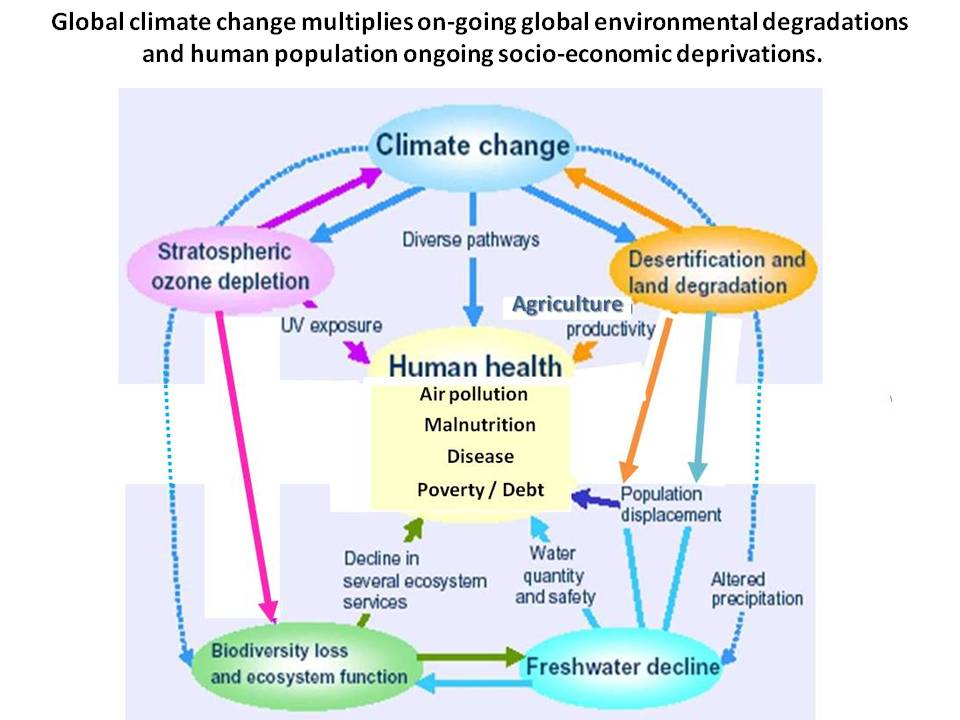 how to prevent global climate change