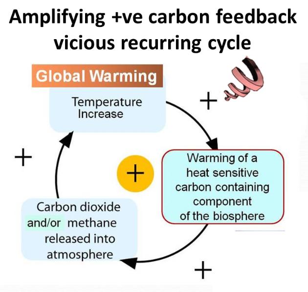 Carbon Footprint Paper