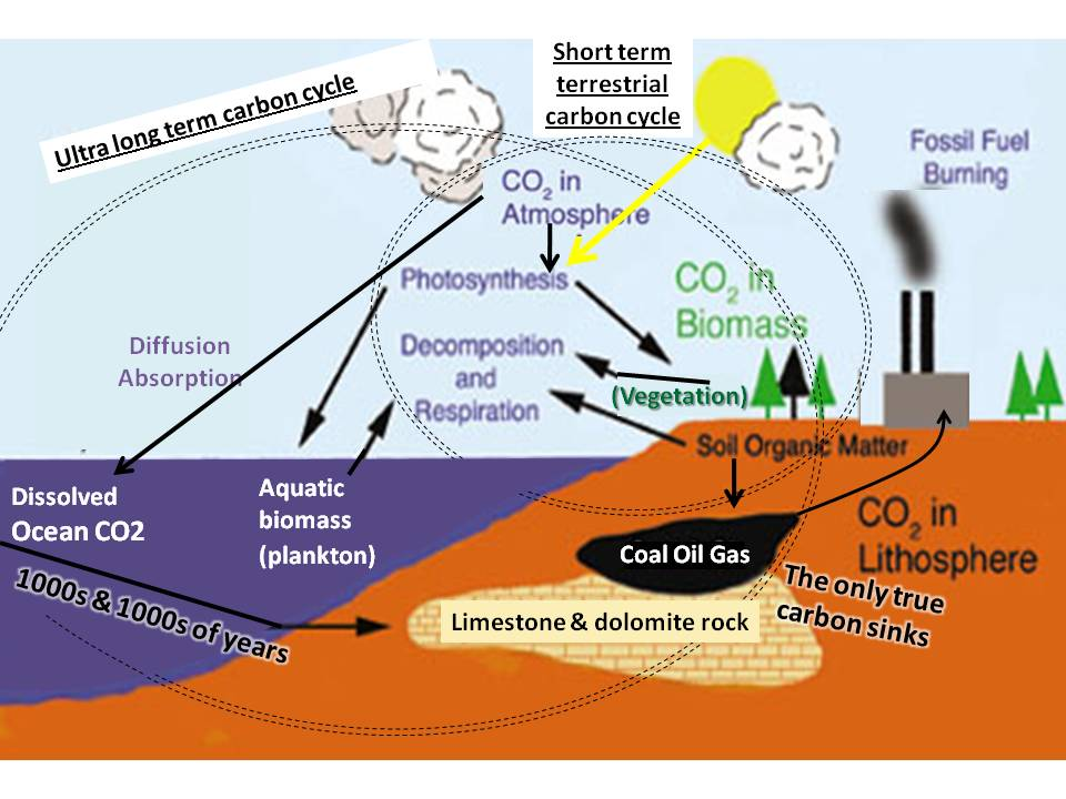 an analysis of the sources of carbon dioxide in the earths atmosphere And one of them argues that carbon isotope analysis  that more carbon dioxide in the atmosphere is  there are multiple sources and.