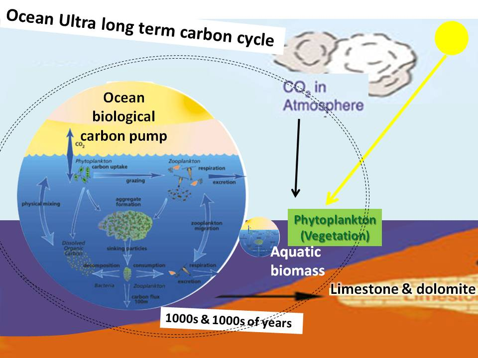 Image result for What is the importance of carbon dioxide in the atmosphere