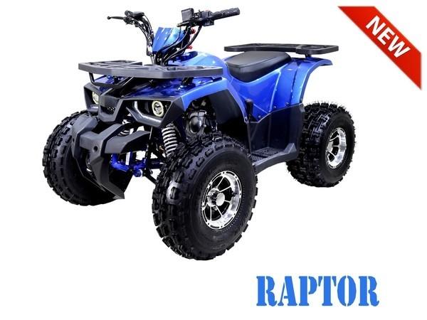 raptor 125 blue
