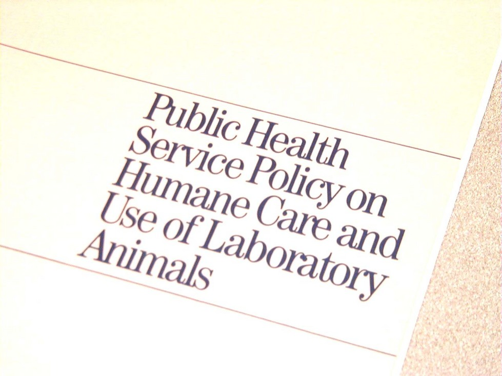 public policy for animal welfare in In the united states, the office of laboratory animal welfare (olaw) provides  guidance and interpretation of the public health service (phs) policy on  humane.