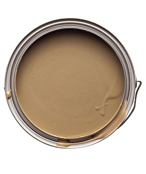Capital 10 home page - What paint colors make brown ...