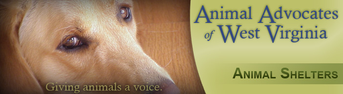 Animal Shelters Aawv