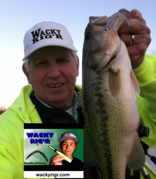 wacky stick bait tool o rings worms wacky bill
