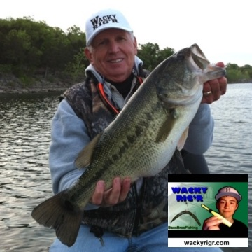 0 wacky tool stick bait saver worm k and j tackle