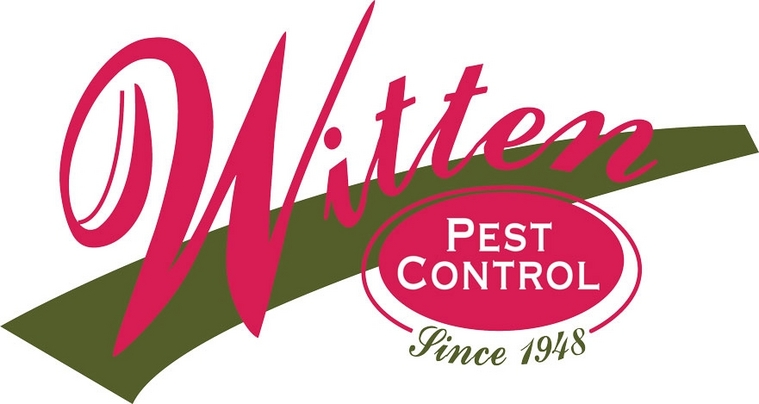 Affordable Pest Control San Antonio Surrounding Areas