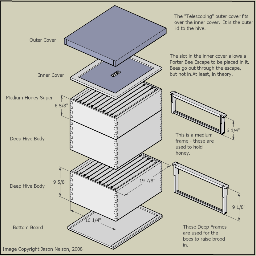 Plans for Langpohl Top Bar Hive | its the bees knees