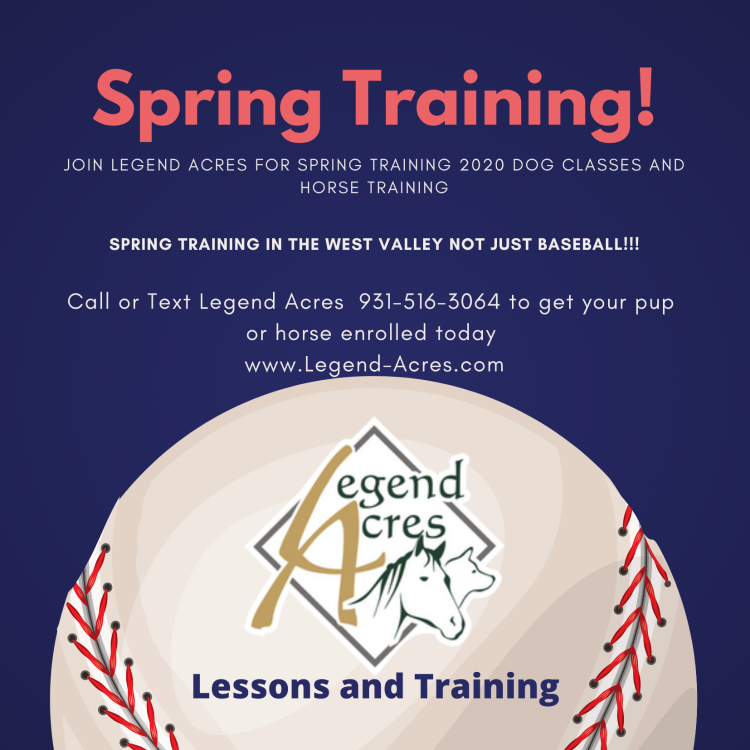 Online Dog Training Courses with Legend Acres