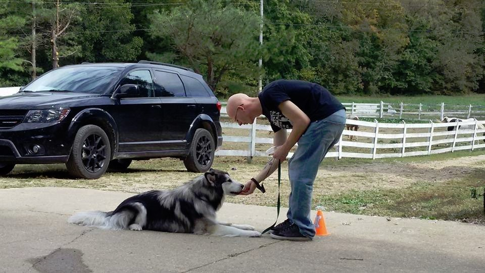 Best dog trainer in the West