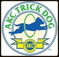 AKC Trick Dog Evaluation and Video Submission