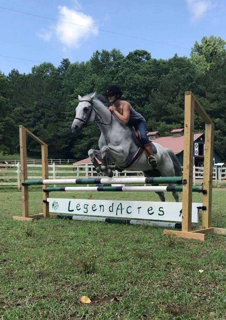 Legend Acres Horse Training