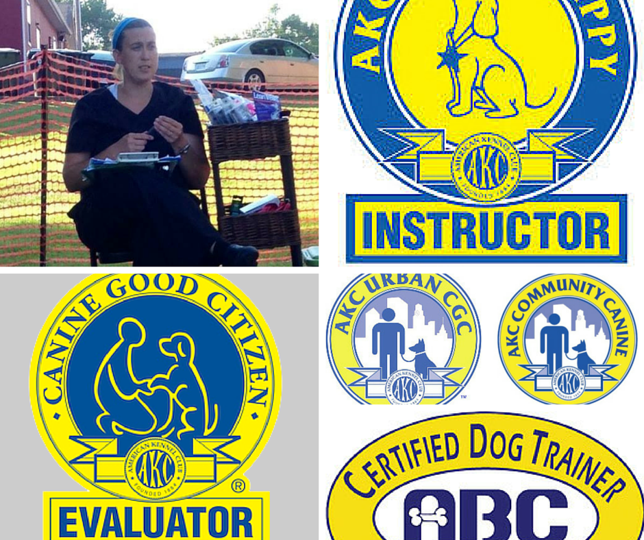 Online dog training courses from an AKC Evaluator
