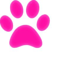 Lovely Rita S Dog Grooming