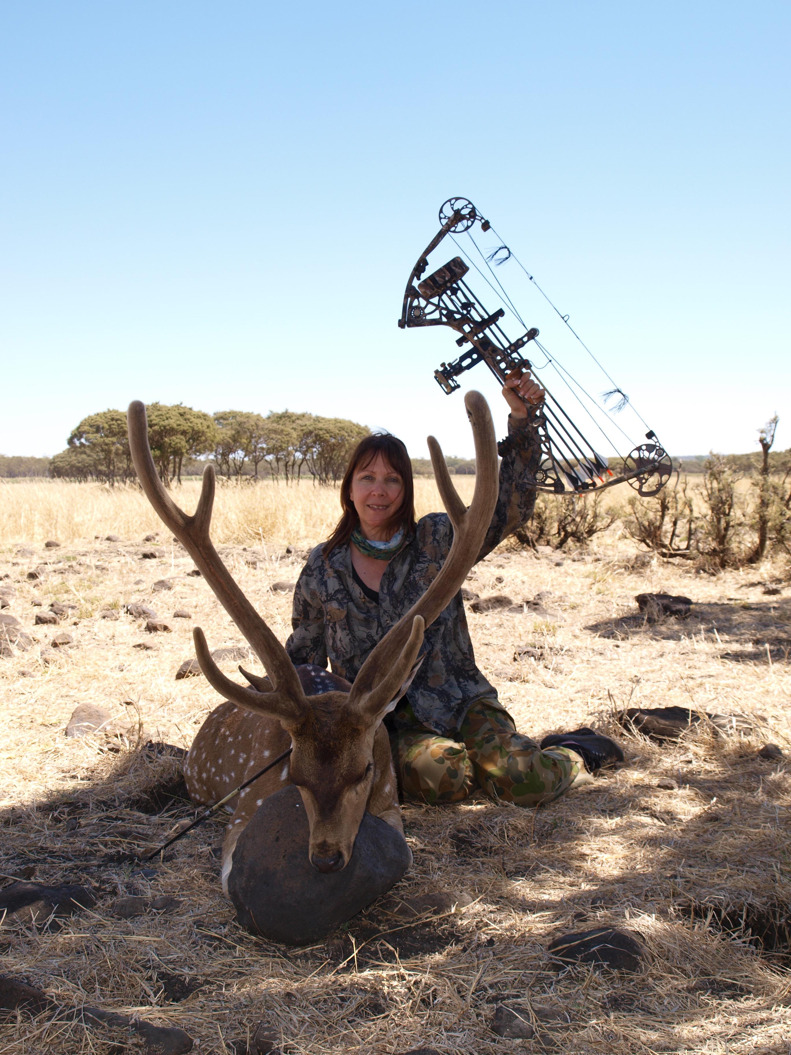 Chital Deer Bowhunting