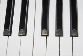 Piano Keyboard A to G Music School Sutton London