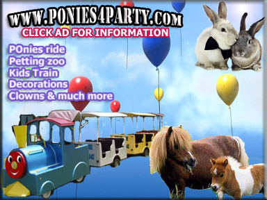 ponies petting zoo ad for pool fence