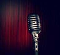 Vocal mic