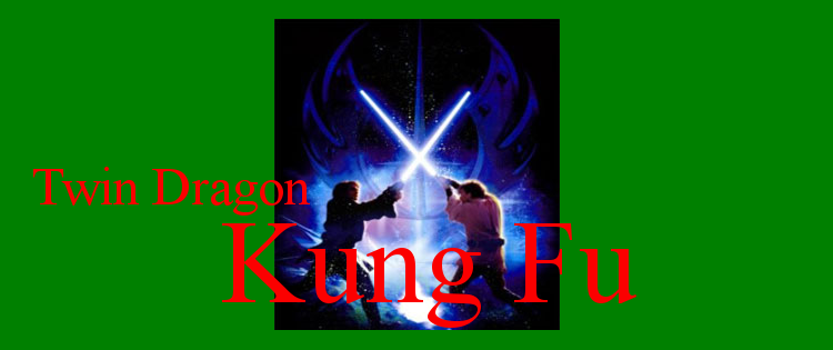 Lightsaber Dueling Club at Twin Dragon Kung Fu
