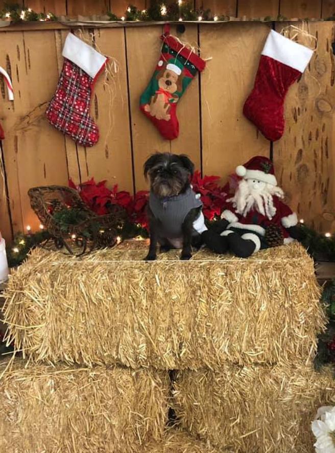 christmas booth 2