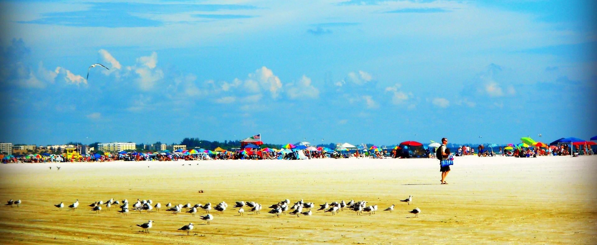 beach crop