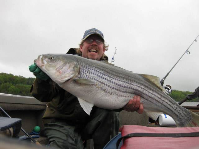 Fishing for Nysdec fishing license