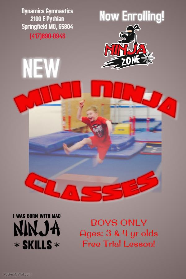 mini ninja flyer (2)