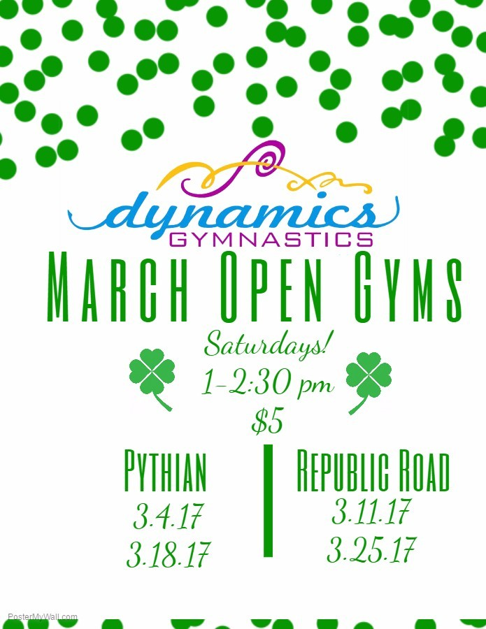 March 17 Open Gym