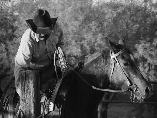 Hally's Custom Working Ranch Cowboy Hat