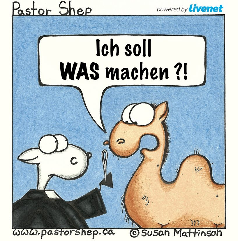 livenet.ch german webportal christian comic pastor shep translated cartoon des tages livenet susan mattinson