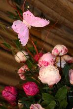 Pink Princess Peonies by belle fleur