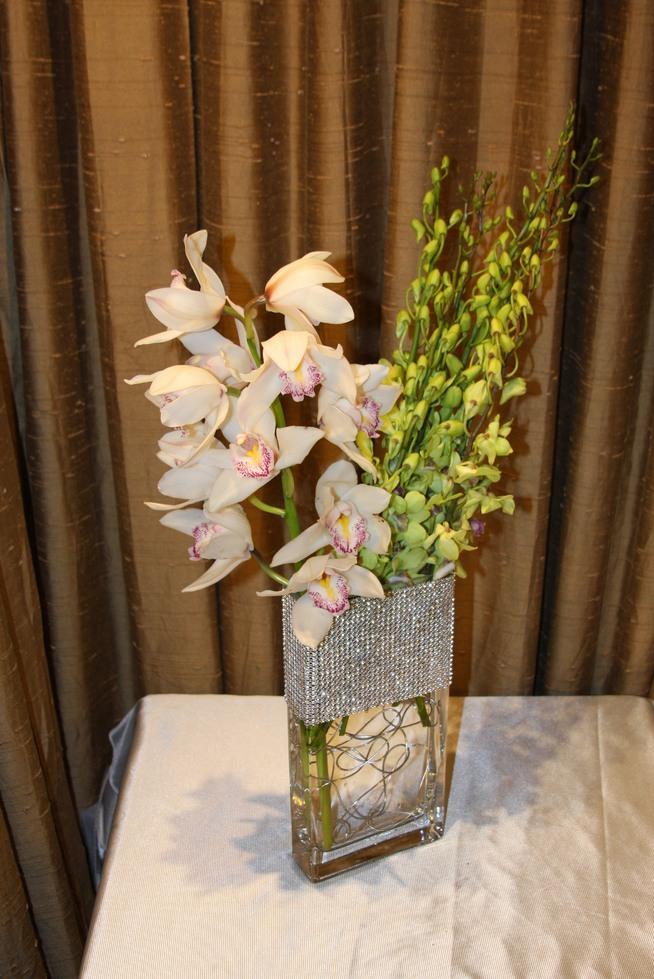 White Blooming Orchid Cymbidium