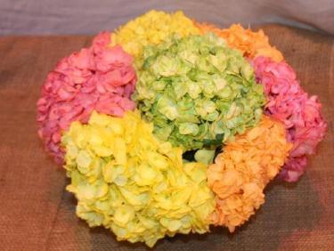 Cheerful Hydrangea Posh Compact Arrangement by belle fleur